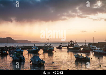Sonnenaufgang über dem Hafen in Lyme Regis in Dorset, Großbritannien. - Stockfoto