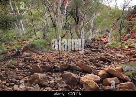 Kings Canyon Creek und ausgetrockneten Flussbett im Northern Territory Outback Australien - Stockfoto