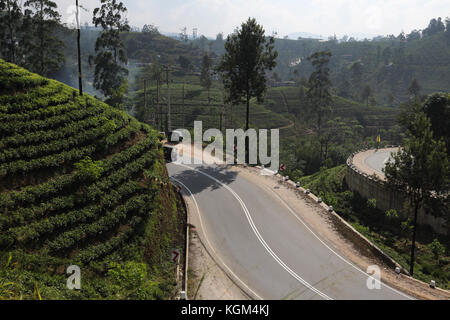 Hill Country zentrale Provinz Sri Lanka kurvenreiche Straße und Teeplantagen in der Nähe von hatton - Stockfoto