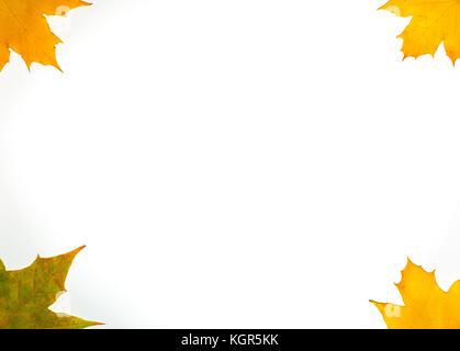 Herbst Karte von farbigen fallende Blätter auf weißem Hintergrund - Stockfoto