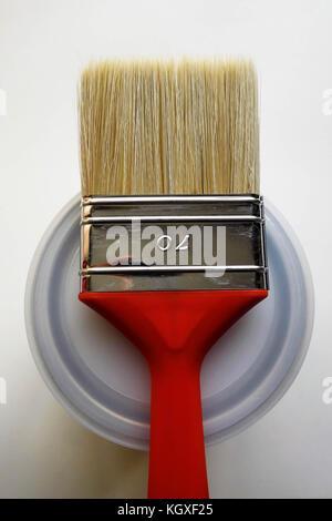 Red Pinsel mit der Stockfoto