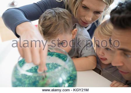 Junge Familie füttern Goldfisch in der Schüssel - Stockfoto