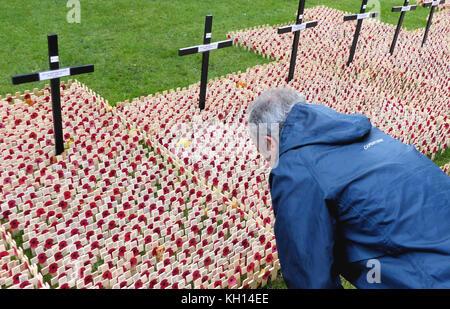 London, Großbritannien. 13 Nov, 2017. Menschenmassen versammeln, um Ansehen und Werk memorial Mohn die der beiden - Stockfoto