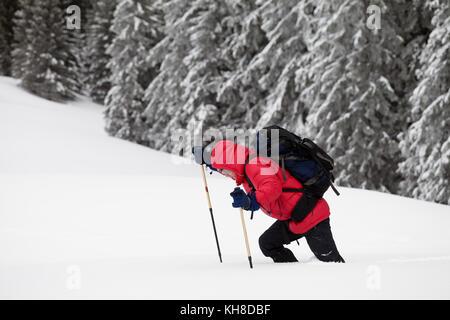 Wanderer macht sich auf den Weg auf die schneeverwehung im verschneiten Wald am grauen Winter tag nach dem Schneefall. - Stockfoto