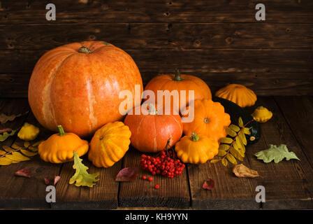 Groupe orange Kürbisse und Squash auf dunklem Hintergrund - Stockfoto