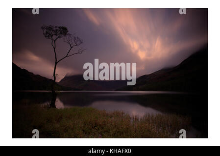 Ein einsamer Baum auf buttermere Lake, Lake District, Cumbria. England. - Stockfoto