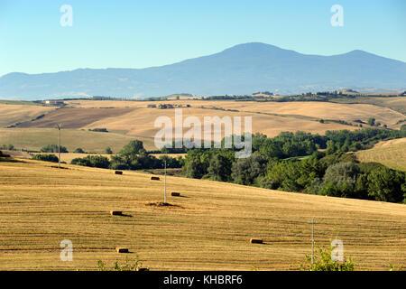Italien, Toskana, Crete senesi, Landschaft und Monte Amiata - Stockfoto