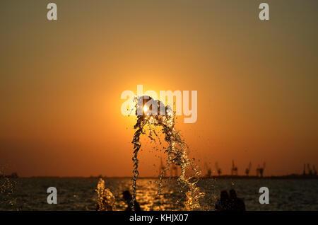 Wasser spritzen auf Sonnenuntergang farben Hintergrund mit Menschen und Krane Silhouetten isoliert. - Stockfoto