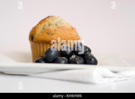 Blueberry Muffin mit frischen Blaubeeren. Studio noch Leben schießen. - Stockfoto