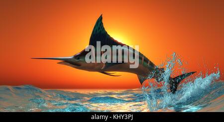 Blauer Marlin - Ein blauer Marlin springt aus dem blauen Ozean in einem spektakulären Sprung bei Sonnenuntergang. - Stockfoto