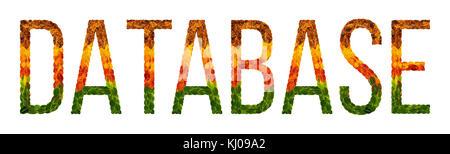 Wort Datenbank mit Blätter weiß isoliert Hintergrund geschrieben, Banner für Drucken, kreative Darstellung von farbigen - Stockfoto