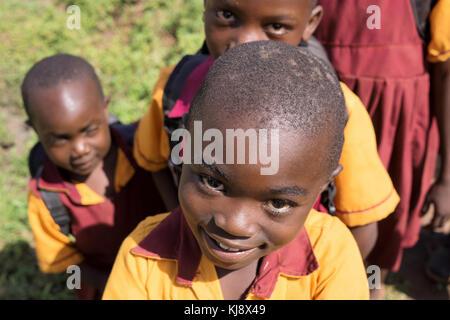 Afrikanische Schule Kindern an einer Grundschule in der Nähe von Kasese, Western Uganda, in Afrika. - Stockfoto