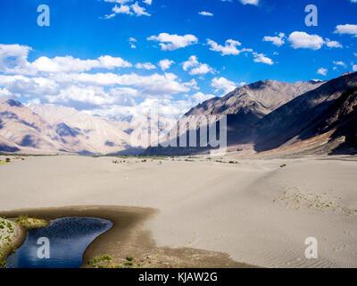 Sanddünen im Nubra Tal in Ladakh, Indien - Stockfoto