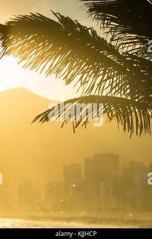 Golden Sunset leuchtet die Silhouette der Palmwedel gegen die Umrisse der Gebäude und Berge von Ipanema in Rio de - Stockfoto