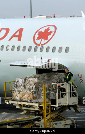 Mann Gelb hohe-viz Waffenrock Beladen in ein Air Canada Airbus A340-300 am Terminal 3 geparkt - Stockfoto