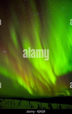 Die aurora borealis ist das Aufleuchten des Nachthimmels an einem kalten klaren Nacht nördlich von fairbanls Alaska - Stockfoto