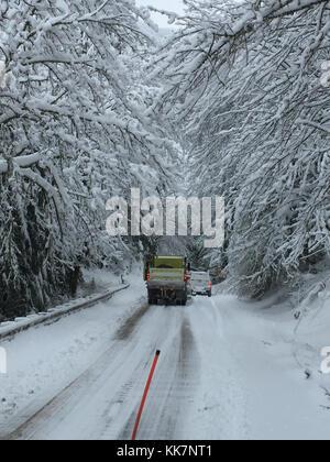 Unsere Wartungspersonal macht sich auf den Kopf, nachdem sie die Bedingungen auf dem geschlossenen Abschnitt von SR 542 westlich des Mt. Skigebiet Baker. Etwa 100 Bäume fielen unter starkem Schnee und Wind, wodurch die Autobahn zu schließen. Winter in der Nähe von Mt Baker 32786379385 o