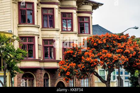 San Francisco Stadtbild, Haight Ashbury - Bezirk - San Francisco, CA, USA - Stockfoto