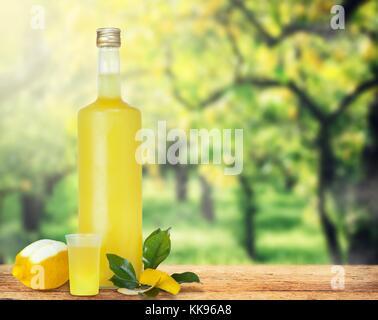 Italienische alkoholische Getränke - Limoncello Stockfoto, Bild ...