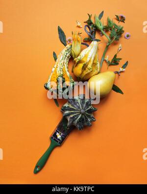 Kreative herbst Zusammensetzung der Kürbisse - Stockfoto