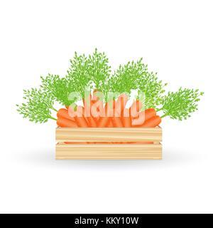 Frische Karotten in Holzkiste - Stockfoto