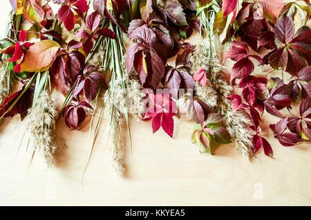 Blumenstrauß aus bunten Blätter von wilden Trauben, Schilf und ...