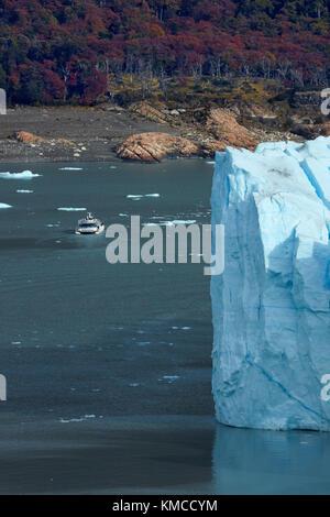Touristenboot und Perito Moreno Gletscher, Parque Nacional Los Glaciares (World Heritage Area), Patagonien, Argentinien, - Stockfoto
