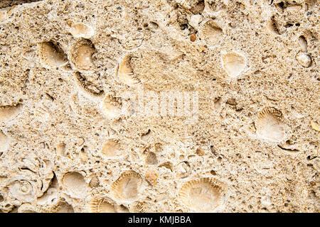 Oberfläche der alten antiken braun Stein - Stockfoto