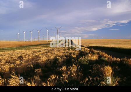 Stateline Wind Projekt mit Power Generator Windmühlen. Walla Walla County, Washington, USA - Stockfoto