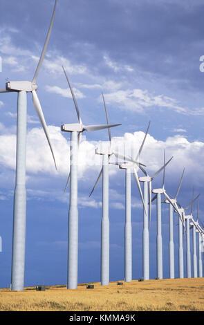 Windmühlen in einer Reihe in den Hintergrund treten. Stateline Wind Projekt, Walla Walla County, Washington, USA - Stockfoto