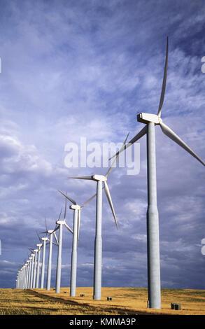 Strom erzeugen Windmühlen an der Stateline Wind Projekt, Walla Walla County, Washington, USA - Stockfoto