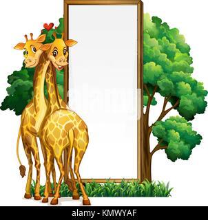 Zwei Giraffen und leeres Whiteboard Abbildung - Stockfoto