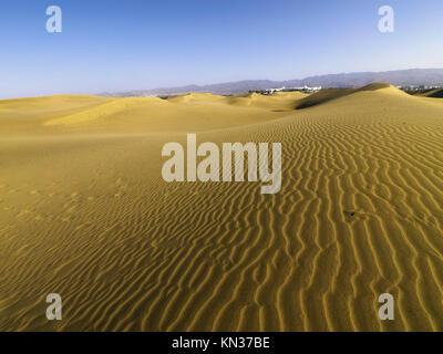 Gold Sand Dünen von Maspalomas Gran Canaria, Kanarische Inseln, Spanien. - Stockfoto