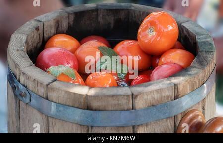 In großen Eichenfässern leckere eingelegte Tomaten mit Gewürze: Dill, Johannisbeere Blatt, Kümmel. - Stockfoto