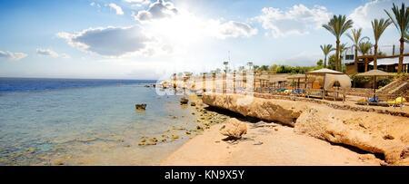 Korallenriffe am Strand des Roten Meeres. - Stockfoto