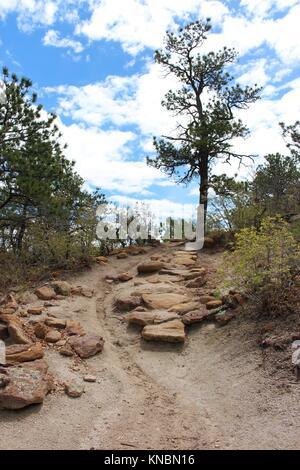 Ein Schmutz Wanderweg, mit Steinen übersät, umrandete mit Vegetation, auf der ansteigenden Aufstieg am Palmer Park - Stockfoto
