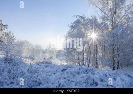 Ein Wintermärchen in Großbritannien als ein Fuß Schnee bringt Chaos, aber die Schönheit der Grafschaft Shropshire. - Stockfoto