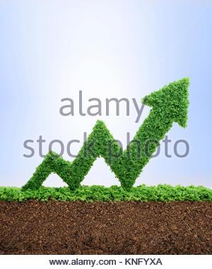 Gras wächst in der Form eines Pfeils graph, symbolisiert die Sorgfalt und Hingabe für Fortschritt, Erfolg und Profit - Stockfoto