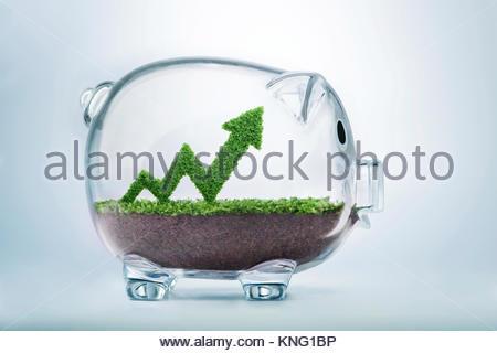Gras wächst in einem Graphen Form, innen ein Sparschwein, symbolisiert die Sorgfalt, Engagement und Investition - Stockfoto