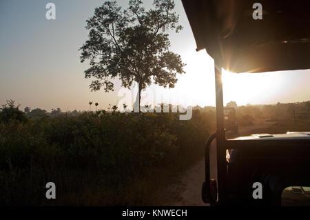 Safari Geländewagen an den goldenen Sonnenuntergang mit Wiesen und Berge zu Yala National Park, Sri Lanka - Stockfoto