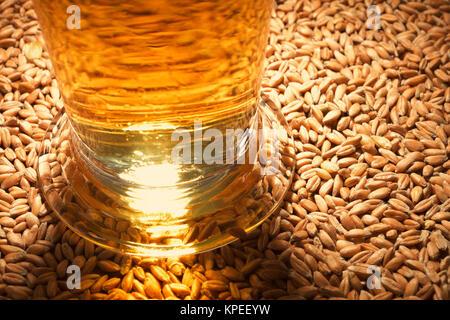 Bier Glas - Stockfoto