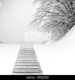 Holzboden auf Schnee mit fallenden Baum - Stockfoto