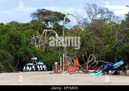 Kajaks für Touristen sind vor der Mangroven auf dem weißen Sandstrand gestapelt. Playa Isabela, Puerto Villamil, - Stockfoto