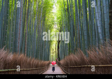 Ansicht der Rückseite Frau roten traditionelle Dach entlang einem Pfad mit hohen Bambus Bäumen gesäumt. - Stockfoto
