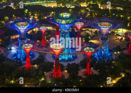 Hohen winkel Blick auf das beleuchtete Supertree Grove in Gärten durch die Bucht, Singapur bei Nacht. - Stockfoto