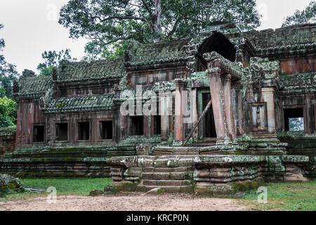 Überwucherte Ruinen eines antiken Gebäudes innerhalb der Angkor Wattemple Komplex in der Nähe von Siem Reap in Kambodscha, - Stockfoto
