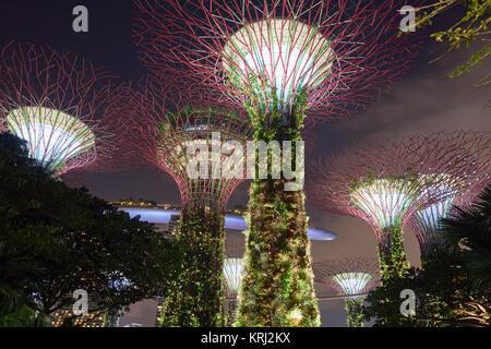 Marina Bay Sands Hotel und SkyPark hinter dem Supertree Grove - unglaubliche moderne Architektur in Singapur - Stockfoto