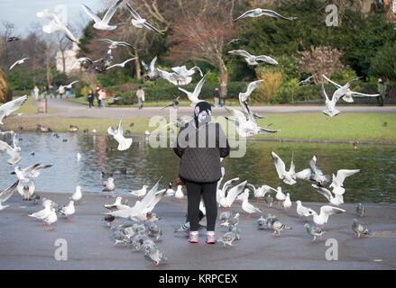 Eine ältere Frau steht allein das Füttern der Vögel im Regent's Park, London, Vereinigtes Königreich - Stockfoto