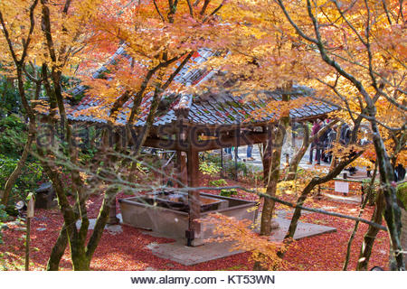 Blick von oben auf die Chozuya oder Temizuya (Wasser Waschung Pavillon) und Bunte Momiji Ahorn Baum an Shojuraigousan - Stockfoto