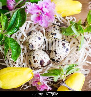 Ostern Zusammensetzung der Eier und Frühlingsblumen. - Stockfoto